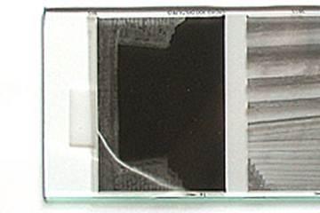 Anti Newton Ring Film Holder Epson v700 v750 2450 3200 4870